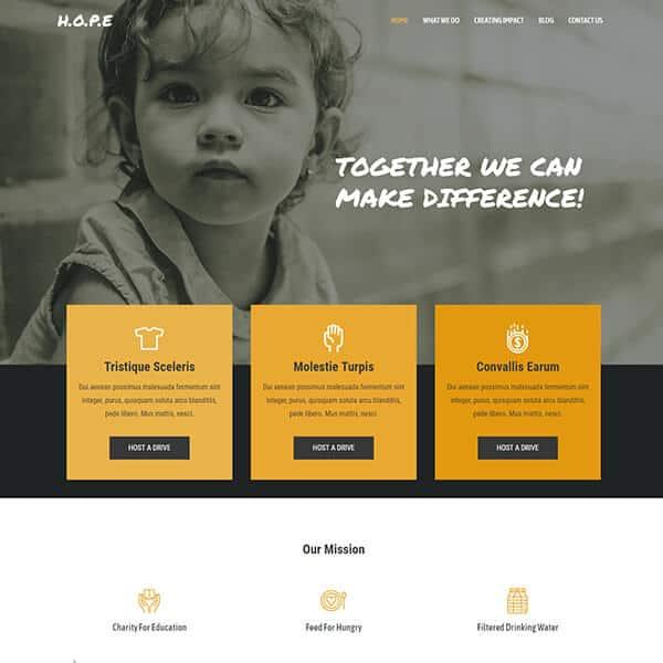 Non Profit and Charity Web Designs